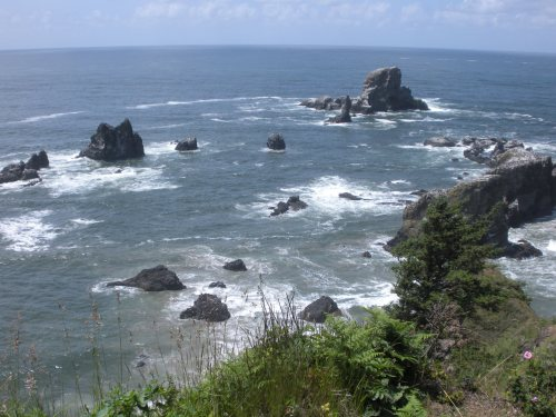 Just one of the amazing views from Ecola Point.