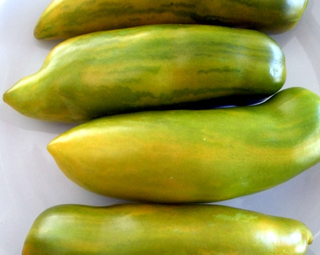 Heirloom green zebra tomatoes.